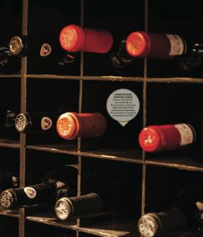 Iniciar una buena colección de vinos puede brindarte grandes satisfacciones. Te decimos cómo hacerlo y triunfar en el intento.